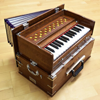 Harmonium Sat Nam Travel, brown