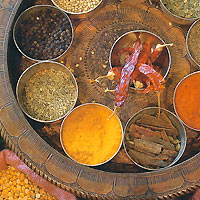 Organic Spices & Herbs