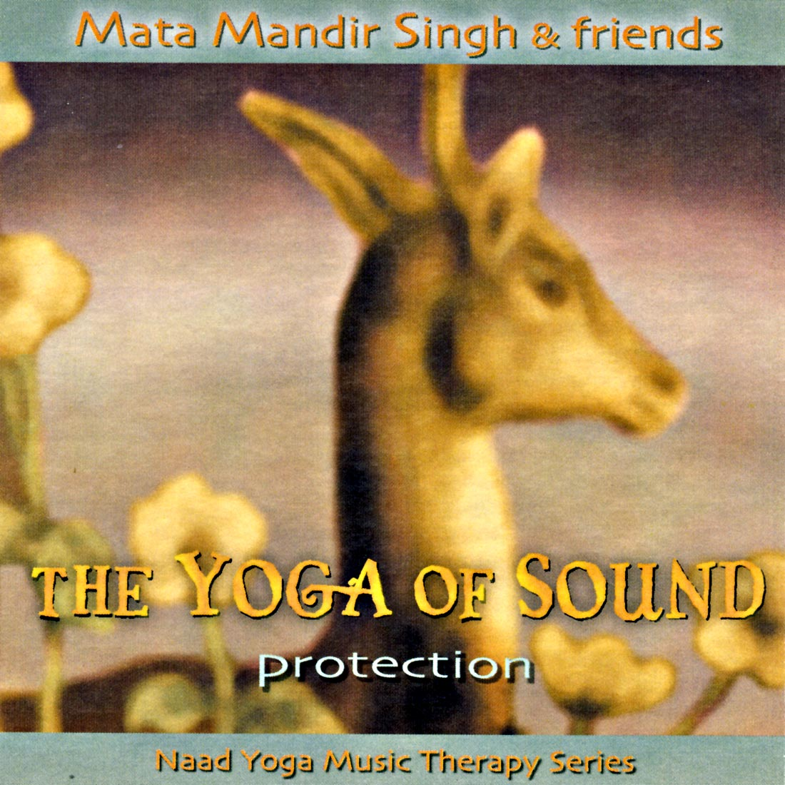 Protection - Mata Mandir Singh & Friends CD