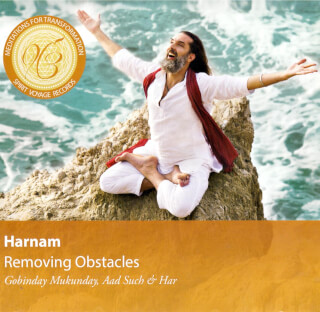 Removing Obstacles - Harnam CD