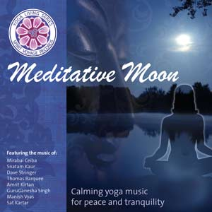 Meditative Moon - Various Artists CD