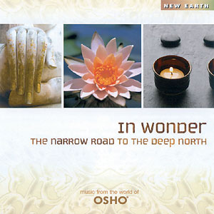 In Wonder - The Narrow Road CD