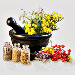 Ayurvedic Spices & Herbs for Body and Soul