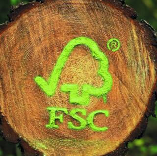 Yogi Tea & FSC® – careful use of forest resources