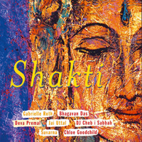 Shakti - Various Artists CD